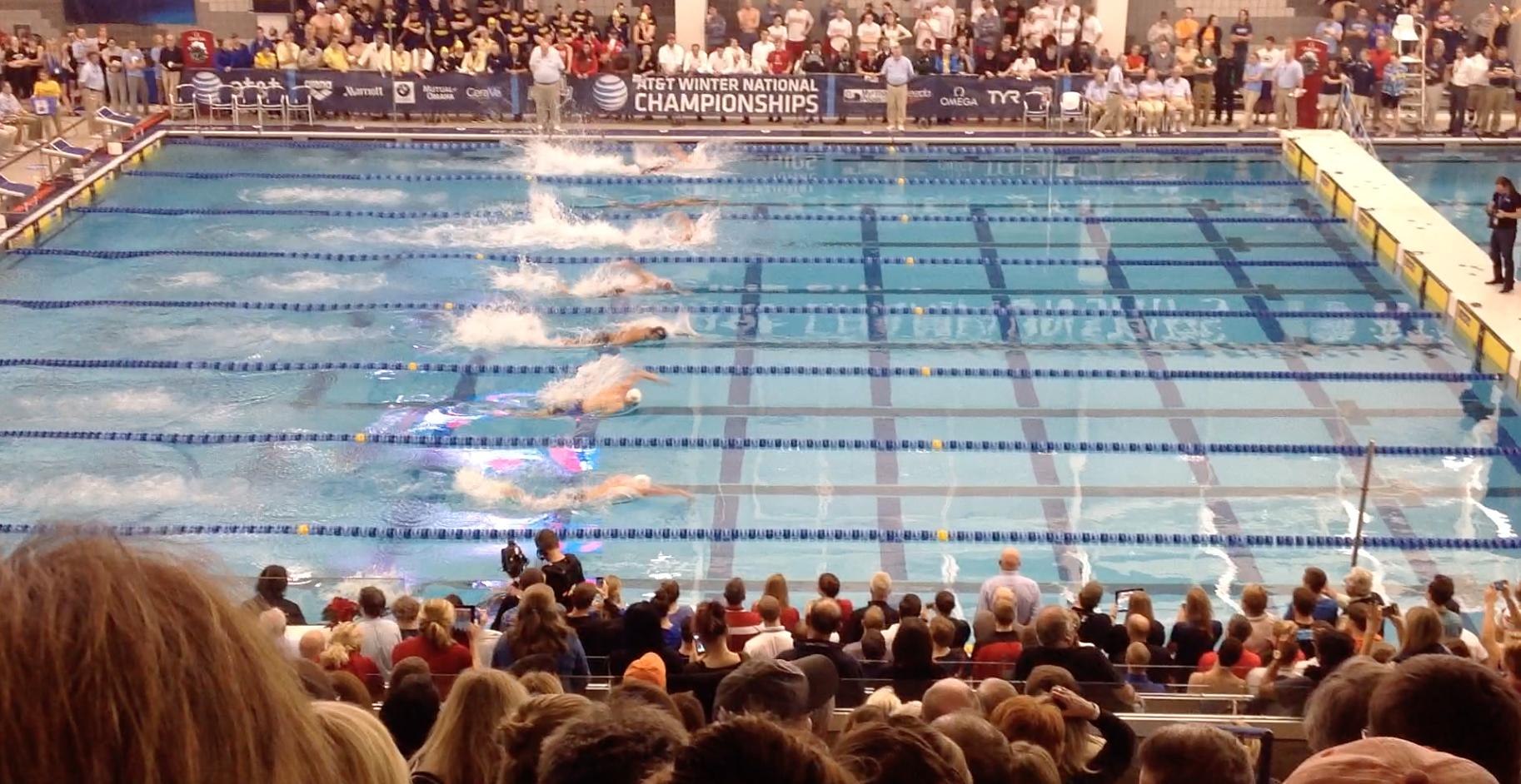 SCY, short course pool, USA swimming, short course yards, swimming pool, GAC