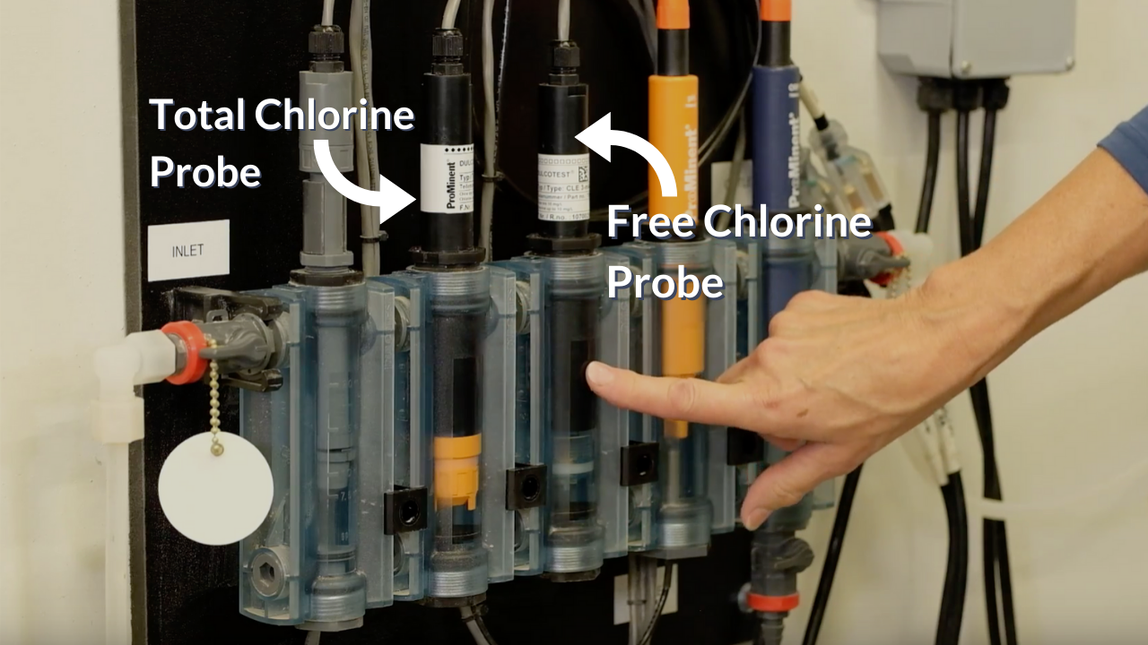 TAC - FAC Probes, prominent, combined chlorine