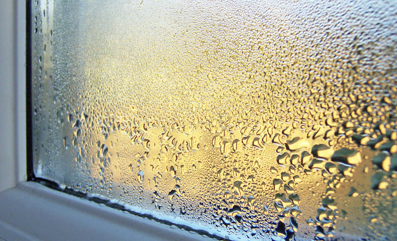 window condensation, dew point, natatorium condensation